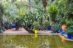 Marrakech gardens Stock Photography