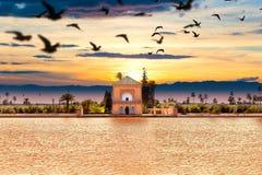 Scenical Menara garden.Travel to morocco.Marrakech. Marrakech Landmark and architecture.Scenic landscape Royalty Free Stock Photos
