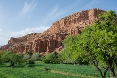 Marrakech landscape, meadow and in the background. Monkey fingers. royalty free stock photography