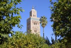 marrakech morocco Royaltyfri Fotografi