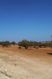 Marrakech natury krajobrazy w Maroko, Afryka Pustynia i góry Podróż Maroko zaniki Zdjęcie Stock