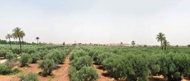 Marrakech panorama Royalty Free Stock Photos