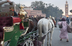 Marrakeh horse carriage Stock Image