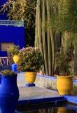 Marrakesh, jardines de Majorelle Imagen de archivo