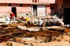 Marrakesh, Morocco. Tannery and animal skins or leather lie on the ground in the medina stock photo