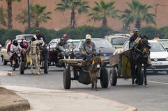 marrakesh ruch drogowy Morocco Zdjęcie Stock