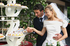 Marriage. Wedding pictures, the couple just married Royalty Free Stock Photo
