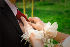 Marriage Royalty Free Stock Image