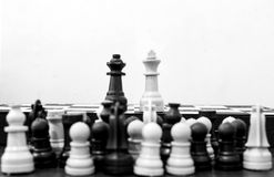 Marriage. Chess in black and white Royalty Free Stock Photo