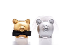Marriage concept two cute pigs Royalty Free Stock Images