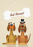Marriage of dogs Royalty Free Stock Photo