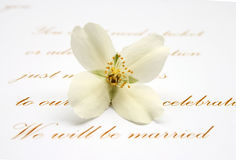 Marriage invitation Stock Photo