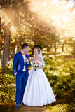 Marriage. Newlyweds outdoors Stock Images
