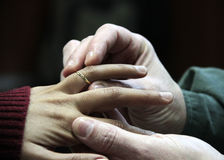 MARRIAGE. Placement of alliances in the left hand, a commitment for life Stock Image