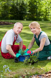 Marriage planting flowers Stock Photo