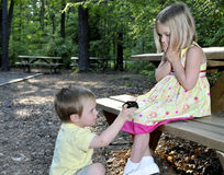 Free Marriage Proposal Stock Photography - 14014612