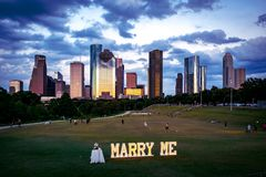 Marriage Proposal in a Park in Houston royalty free stock photos