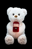 Marriage proposal. Symbol soft toy with ring Royalty Free Stock Photography