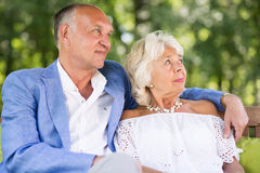 Marriage sitting on the bench Stock Image
