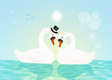 Marriage of swans. Illustration of swans in love in the lake Stock Photo