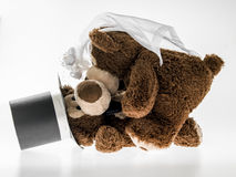 Marriageable teddy bears Royalty Free Stock Photo