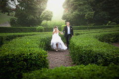 Married bride and groom running at garden maze Stock Photography