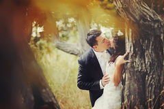 Sensual married couple in forest Stock Image