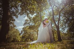 Married Couple in forest embracing Royalty Free Stock Images