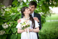 Married couple hugging under tree at summer Stock Images