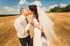 Married couple kissing on yellow field Royalty Free Stock Photography
