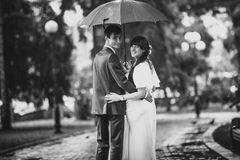 Married couple standing in park under umbrella Stock Photos