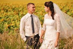 Married couple standing in yellow sunflowers field Stock Photos