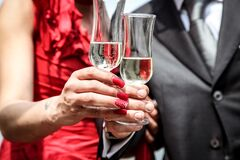 Married couple toasting with champagne Stock Photography