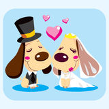 Married Dog Love. Cute married dog couple smiling in love on wedding day dressed for the celebration Stock Image