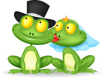 Married frog kissing Royalty Free Stock Photos