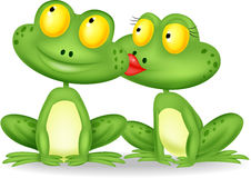 Married frog kissing Royalty Free Stock Images