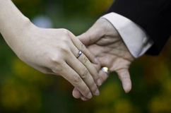 Married hands. Man and woman's hands with wedding rings Stock Photography