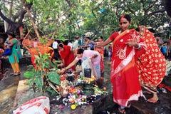 Married Hindu ladies worship a holy tree and Shiva lingam stock photography