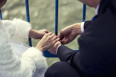The married people, hands and fingers with rings Stock Image