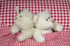 Married teddy bears in bed: Sleeping problems with a snorer. Stock Images