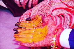 marrige κίτρινο χέρι χρώματος γαμπρών PIC στοκ φωτογραφίες