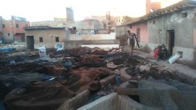 marrocos Fotos de Stock Royalty Free