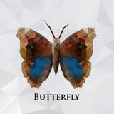 Marrom da borboleta do vetor geométrico Fotos de Stock Royalty Free