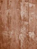 Marrom da textura de Duotone Imagem de Stock