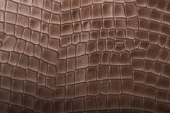 Marrom de couro textura gravada Imagem de Stock Royalty Free