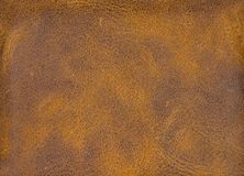 Marrom do clarete e couro bege, de couro Armadura, close up imagem de stock