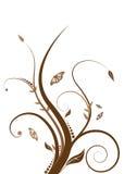 Marrom floral Imagens de Stock Royalty Free