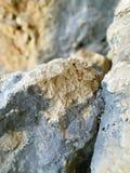 - Marrom - rocha branca azul Fotografia de Stock