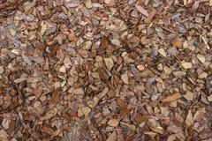 Marrone di legno del pacciame Fotografia Stock Libera da Diritti