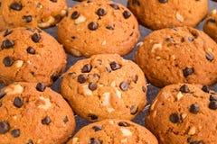 Marrone dorato, biscotti di pepita di cioccolato che si raffreddano su uno scaffale Fotografia Stock